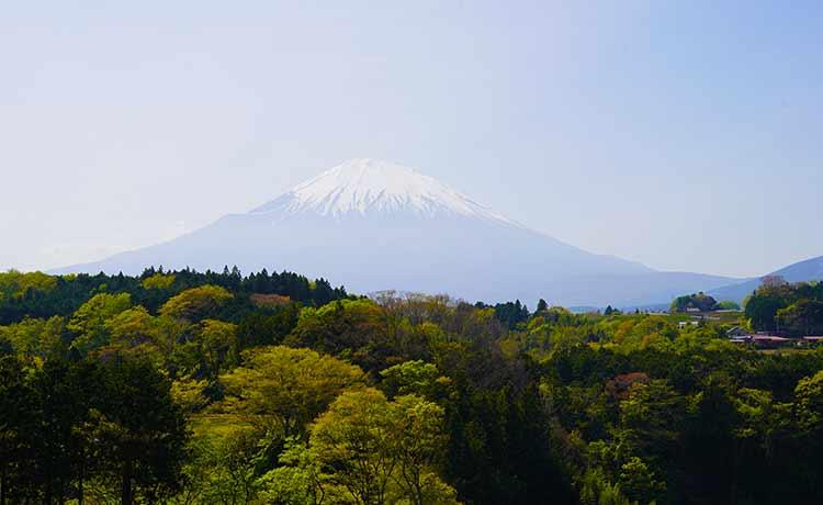 富士山撮影スポット